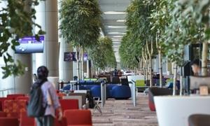 Chơi gì ở sân bay tốt nhất thế giới năm 2018 ở ngay Đông Nam Á