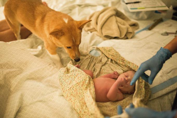 Ryder ở bên cạnh em bé mới sinh.