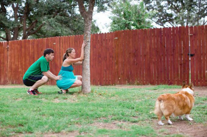 Nó tiếp tục theo chân Brooke đi ra ngoài.