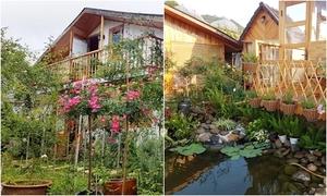 Ông bố Đà Lạt dựng nhà gỗ cho vợ, con trong trong vườn hồng 1.000 m2