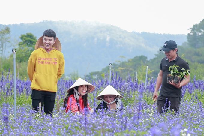 đặt chân đến F Cánh đồng hoa. Dù chỉ mới xuất hiện ở Đà Lạt trong khoảng thời gian gần đây, F Cánh đồng hoa vô cùng nổi tiếng bởi sự hội tụ nhiều loại hoa khác nhau, nhiều màu sắc đan xen tạo nên một cảnh sắc tuyệt đẹp.Với