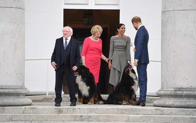Dog lover Meghan was delighted when the Presidents two Bernese Mountain Dogs Bród and Shadow