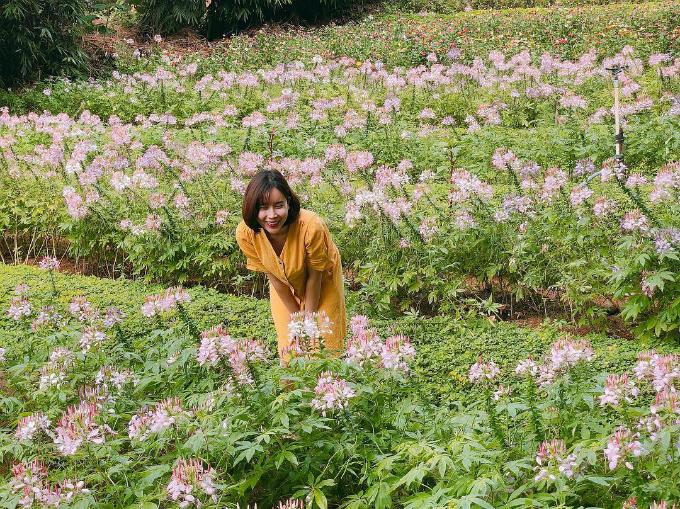 Lưu Hương Giang tranh thủ ngắm hoa khi đi lưu diễn ở Buôn Ma Thuột, Đắk Lắk.