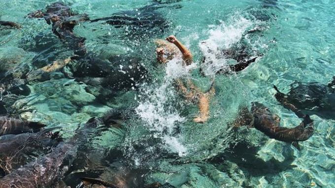 Bạn trai vô tình chụp lại cảnh Katarina bị cá mập kéo xuống nước.