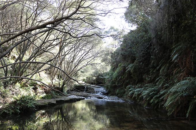 Đường đi trek vào trong thác.
