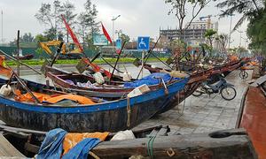 Ngư dân Thanh Hoá đưa tàu bè lên phố tránh bão