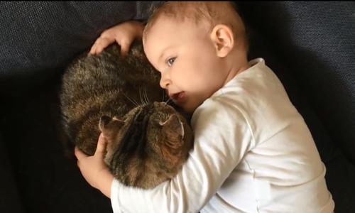 Em bé ngọng nghịu tâm sự cùng chú mèo