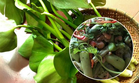 Rau lục bình mang hương vị đồng quê vào từng món ăn