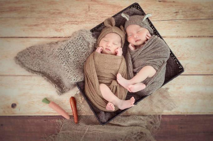 Cặp sinh đôi Patek và Phillipe lúc 12 ngày tuổi.