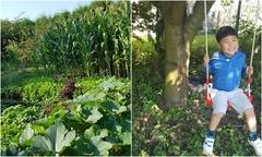 Vườn 1.000 m2 trồng đủ loại rau quê của vợ chồng Việt tại Cộng hòa Czech