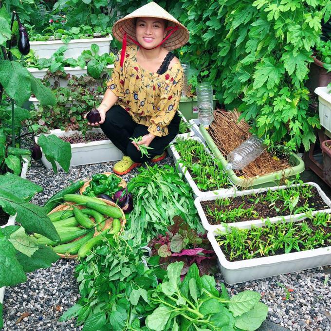 Sản phẩm thu được từ vườn nhà cònđược chị Quỳnh dành làm quà tặng cho bạn bè.