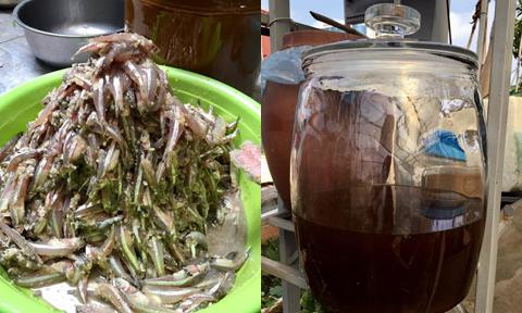 Mẹ đảm chia sẻ công thức làm cốt mắm cá cơm tại nhà