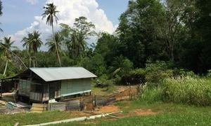 Ngôi làng như miệt vườn còn sót lại giữa Singapore