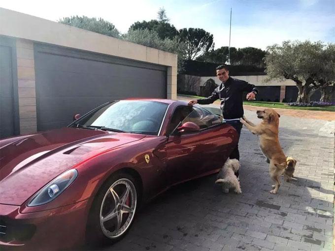 CR7 tạo dáng vớiFerrari đỏ cùng lũ chó trong nhà.