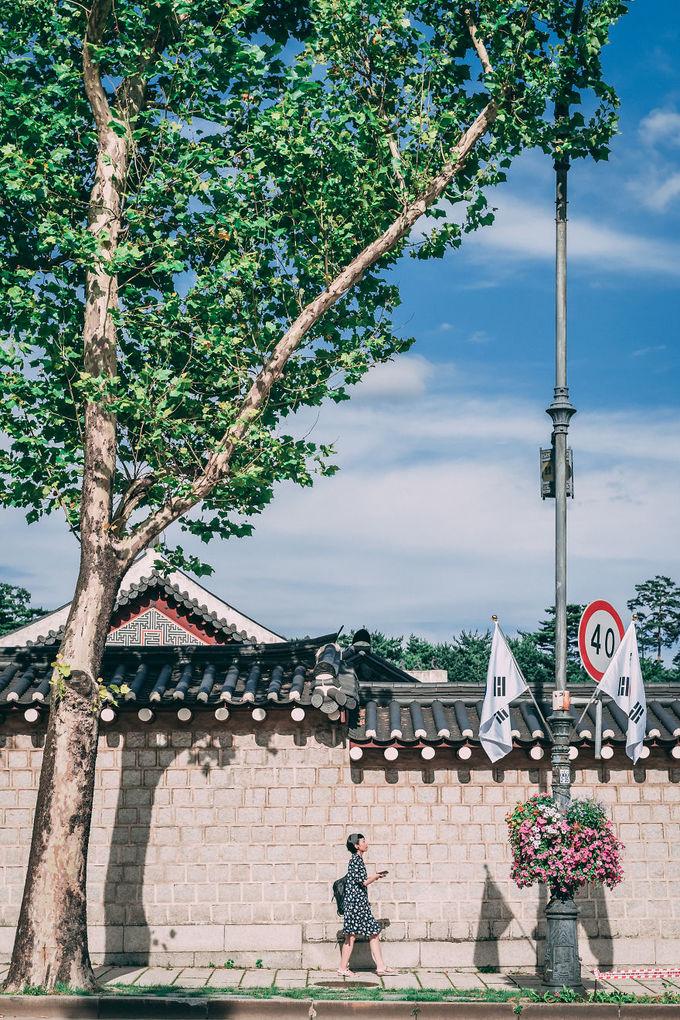 Sắc màu Seoul qua ống kính thầy giáo Mỹ