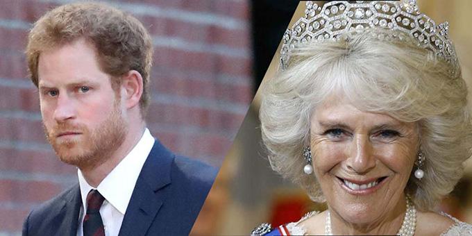 Hoàng tử Harry cho hay anh và William có mối quan hệ thân thiết với vợ hai của bố. Ảnh: Dianaprincess.me.