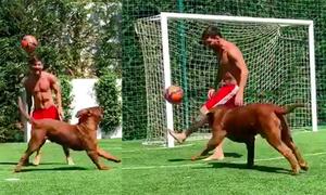 Messi lừa bóng qua chó
