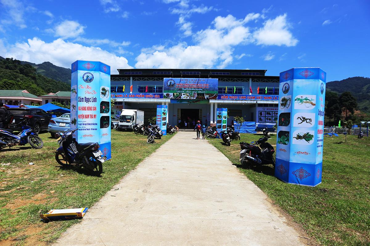 Chợ sâm Ngọc Linh ở Quảng Nam thu tiền tỷ