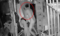 Trộm đột nhập kho bị gia chủ phát hiện đánh tới tấp