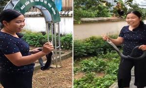 Cô giáo tay không bắt rắn hổ mang ở Lào Cai