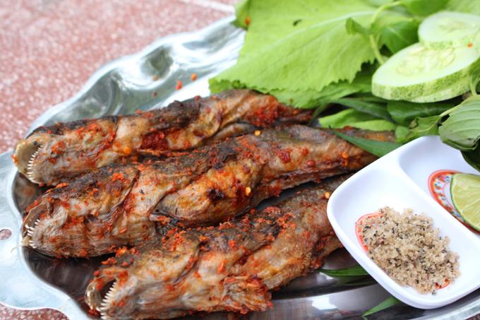 Cá thòi lòi nướng muối ớt ghi điểm nhờ thịt dai, thơm ngọt. Ảnh: Thư Kỳ.
