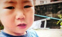 Bé 2 tuổi Nhật Bản sống sót sau 3 ngày lạc trong rừng