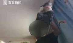 Thanh niên tra tấn mèo cưng của bạn gái sau khi chia tay