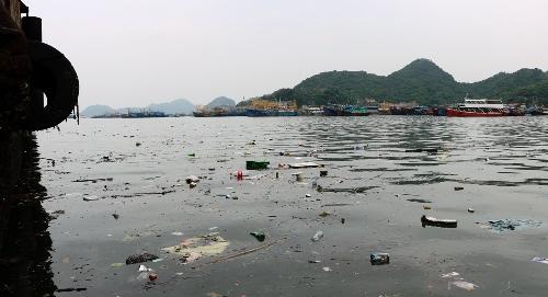 Nhìn góc nào trên vịnh Cát Bà, du khách có thể dễ dàng bắt gặp những hình ảnh rác thải như thế này, mặc dù công nhân Ban quản lý các vịnh Cát Bà đã thực hiện việc vớt, thu gom rác 2 lần/ ngày. Ảnh: Giang Chinh