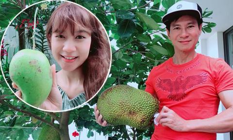 Trái ngọt sai trĩu trong khuôn viên căn biệt thự của Lý Hải – Minh Hà