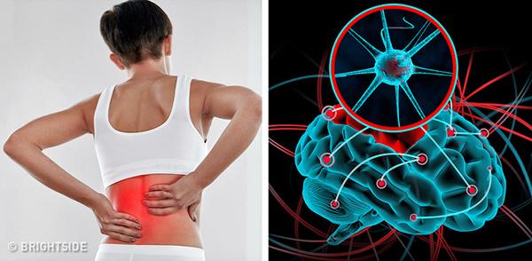 Cơ bắp đau nhức Không phải bỗng dưng mà cơ thể chúng ta bị đau nhức cơ bắp, nếu bạn thấy tình trạng đau nhức diễn ra thường xuyên mà không phải do thói quen sinh hoạt hàng ngày gây ra thì đây là một dấu hiệu cho thấy, cơ thể bạn đang phải hoạt động hết công suất để xử lý độc tố trong người.