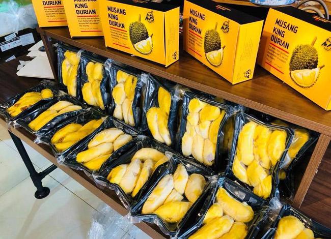Sầu riêng Musang King có xuất xứ từ Malaysia được bày bán tại cửa hàng trái cây Quận 1.