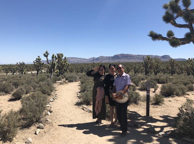 Rừng xương rồng Joshua thuộc tiểu bang Arizona cũng là nơi nhiều du khách ghé thăm khi đến Mỹ.