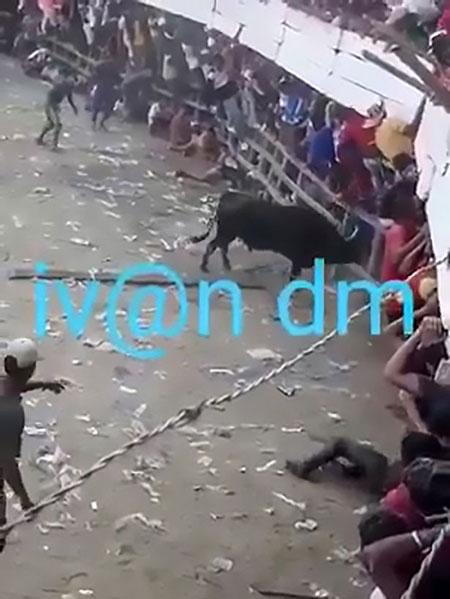 Con bò điên lao vào khán giả ở lễ hội đấu bò tại Colombia hôm 22/8. Ảnh cắt từ video.
