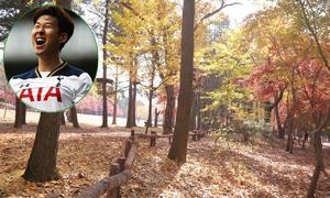 Cảnh thiên nhiên đẹp tuyệt ở nơi Son Heung-min chào đời