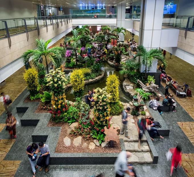Cảnh quan phía trong sân bay cũng thực sự choáng ngợp. Bạn sẽ bắt gặp nhiều tiểu cảnh được bố trí với các loại cây thật, chiều cao khá lớn, hồ nước, hòn non bộ... khiến du khách ngỡ như lạc vào vườn bách tháo.
