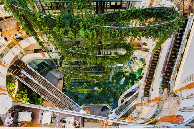 Trung tâm thương mại có thác nước và rừng nhiệt đới ở Bangkok