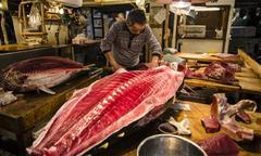 Phiên đấu giá cuối cùng của chợ cá lớn nhất thế giới ở Nhật