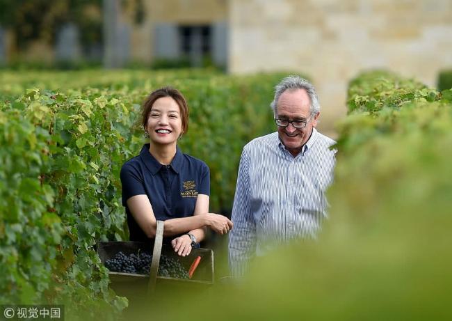 Cùng tham quan vườn nho với Triệu Vy là một chuyên gia trong lĩnh vực sản xuất rượu vang.