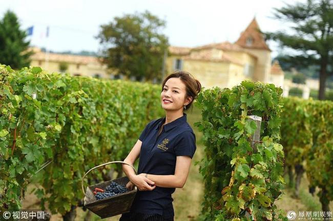 Giữa tháng 9, Triệu Vy tới trang trại Chateau Monlot, Pháp -nơi cô là chủ sở hữu để thu hoạch nho cùng các nông dân. Nữ diễn viên chia sẻ một số hình ảnh tại tư gia với báo chí trong nước. Năm 2011, cô và ông xã Huỳnh Hữu Long đã bỏ ra khoảng 4,7 triệu USD mua lại trang trại này, nhằm mục tiêu phát triển dòng rượu vang Phápcủa riêngmình.