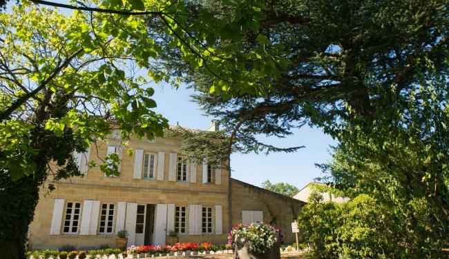 Triệu Vy thu hoạch nho trong tư gia rộng 7 ha ở Pháp - 5