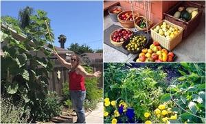 Người phụ nữ từng nặng 180 kg vượt qua bệnh tật nhờ làm vườn