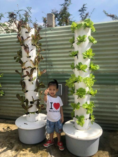 Ông xã của Thanh Vân đặt 2 tháp rau thuỷ canh để trồngrau muống, xà lách xanh, xà lách tím... Hệ thốngtự động bơm dung dịch thủy canh5 phút một lần vàcứ tầm 15-20 ngày cho thu hoạch một đợt rau.