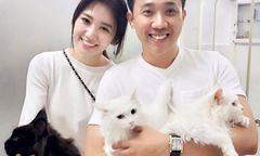 Ảnh hot 25/9: Trấn Thành khoe 'gia đình mèo quý tộc'