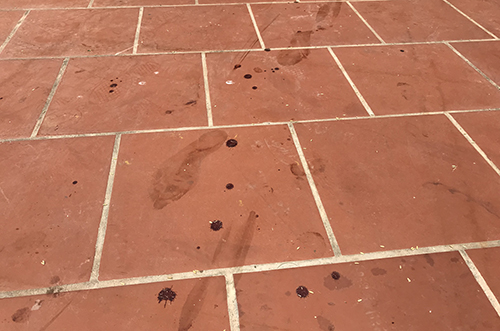 Những vết chân đầy máu tại hiện trường. Ảnh:Phạm Dự.