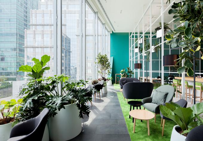 Người ta cho đặt nhiều chậu cây xanh trong nhà, tập trung ở phía hành lang để cho chúng được quang hợp. Cây xanh cũng khiến không gian của Open House thông thoáng và dễ chịu hơn.