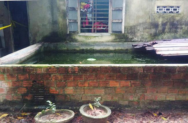 Hồ cá nơi cháu bé ở Quảng Nam tử vong. Ảnh: Sơn Thủy.