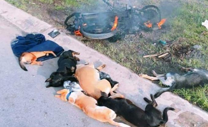Người dân đốt xe của trộm chó. Ảnh minh hoạ.