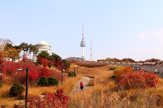 <p> Là điểm du lịch hút khách ở xứ kim chi,<strong>Tháp Namsan</strong>- điểm đến không thể bỏ lỡ - được xem như biểu tượng của thành phố. Nếu không đi cáp treo thì bạn chỉ tốn một chặng xe buýt từ dưới chân đồi lên đến nơi, hoặc cũng có thể tản bộ dưới tán lá mùa thu nếu có sức khỏe. Bạn được xem các hoạt động văn hóa, dân gian ở đây mà không phải mất tiền. Nếu ngại đông đúc mùa cao điểm thì các công viên khu vực lân cận cũng là một gợi ý không tồi.</p>