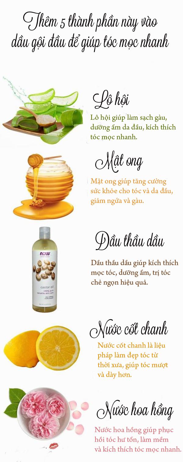 5 thành phần thêm vào dầu gội giúp tóc mọc nhanh và chắc khỏe