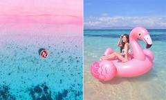 Bãi biển hồng ở Indonesia đẹp như bảng pha màu